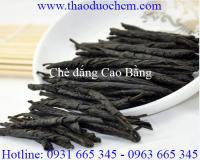 Mua bán chè đắng cao bằng ở Đà Nẵng chữa trị thoát vị đĩa đệm tốt nhất