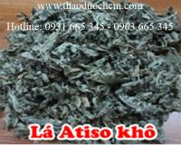 Mua bán lá atiso ở Đà Nẵng có tác dụng chữa trị bệnh viêm thận cấp