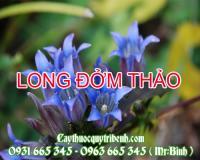 Mua bán long đởm thảo tại Khánh Hòa điều trị sốt cao gây co giật rất tốt