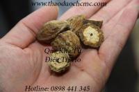 Mua bán quả kha tử tại Long An có công dụng rất tốt trong việc điều trị lỵ