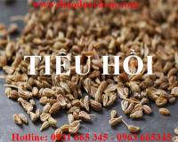 Mua bán tiểu hồi tại Tây Ninh dùng điều trị đau bụng do suy thận tốt nhất