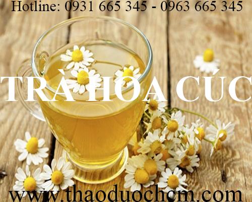 trà hoa cúc thảo dược thanh bình