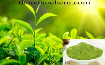 Công dụng làm đẹp của bột trà xanh bảo lộc !!!!