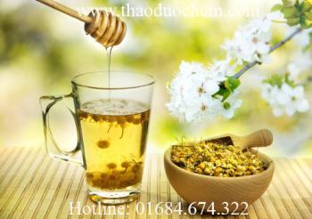 Mua bán sỉ và lẻ hoa cúc khô tại hóc môn trị mất ngủ hạ huyết áp