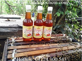 Mua bán mật ong nguyên chất (mật ong rừng) tại hóc môn có tác dụng giảm cân