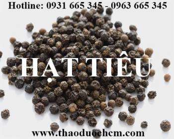 Mua bán hạt tiêu tại Tiền Giang có công dụng điều trị nghẹt mũi hiệu quả