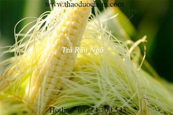 Mua bán râu ngô tại Tây Ninh có tác dụng chữa trị viêm bàng quang