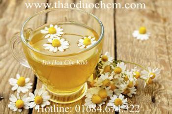 Công dụng của trà hoa cúc khô trong điều trị mất ngủ đau đầu hiệu quả nhất