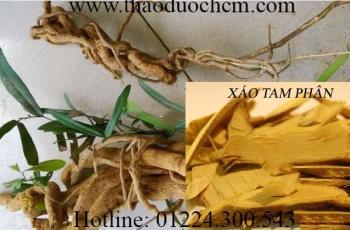 Mua bán xáo tam phân tại Tây Ninh có tác dụng chữa trị ung thu phổi