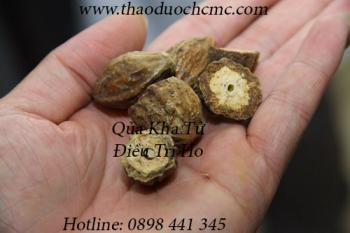 Mua bán quả kha tử tại quận Tân Phú giúp chữa ho lao, ho dị ứng rất tốt
