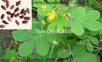 Mua bán Thảo Quyết Minh tại quận Tân Bình giúp an thần dễ ngủ tốt nhất