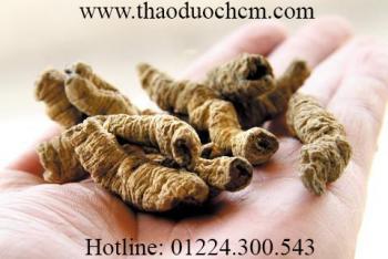 Mua bán củ ba kích tím tại quận Thanh Xuân có tác dụng trị thận hư rất tốt