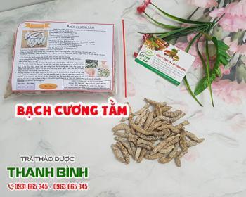 Mua bán bạch cương tằm ở quận Tân Phú giúp làm dịu ho và viêm họng