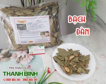 Mua bán bạch đàn ở quận Tân Bình giúp điều trị ho, sát trùng đường hô hấp