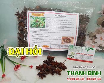 Mua bán đại hồi (hoa hồi) tại TPHCM uy tín chất lượng tốt nhất