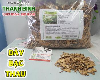 Mua bán dây bạc thau ở quận Bình Tân giúp tiêu đờm, giảm ho và nhuận phế