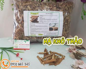 Mua bán hạ khô thảo tại quận 8 hỗ trợ điều trị bệnh xích bạch đới nữ