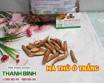 Mua bán hà thủ ô trắng tại TPHCM uy tín chất lượng tốt nhất