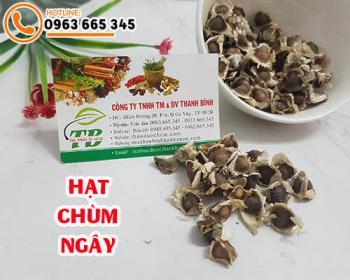 Mua bán hạt chùm ngây ở quận Gò Vấp giúp giảm chứng nóng trong người