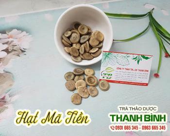 Mua bán hạt mã tiền ở huyện Hóc Môn giúp mạnh gân cốt và giảm đau nhức
