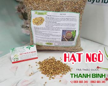 Mua bán hạt ngò ở huyện Củ Chi giúp điều trị an thần, giải tỏa căng thẳng