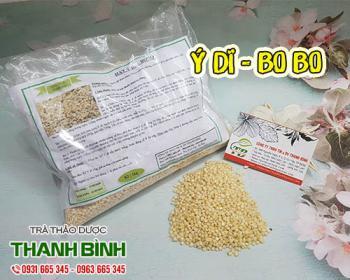 Mua bán ý dĩ ở quận Tân Phú hỗ trợ điều trị tiểu khó, nước tiểu vàng