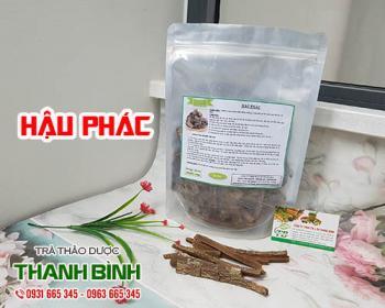 Mua bán hậu phác ở quận Tân Phú có công dụng nhuận tràng trị tiêu chảy