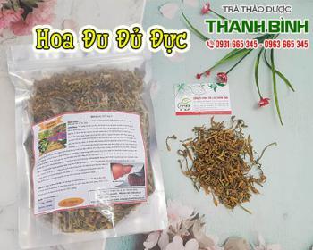 Mua bán hoa đu đủ đực tại TPHCM uy tín chất lượng tốt nhất