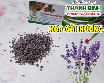 Tác dụng của hoa oải hương trong việc giúp lợi tiêu hóa giảm chứng đầy hơi