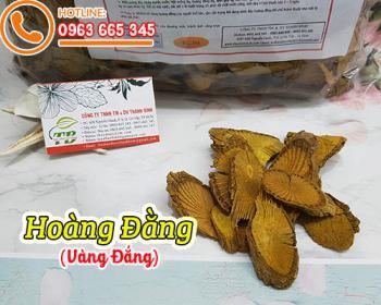 Mua bán hoàng đằng (vàng đắng) ở quận Bình Thạnh hỗ trợ trị viêm gan, vàng da