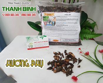 Công dụng của hương phụ trong điều trị rối loạn kinh nguyệt hiệu quả nhất