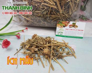 Mua bán ích mẫu ở huyện Bình Chánh giúp lợi tiểu và giảm đau bụng kinh