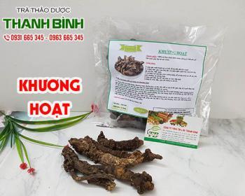 Mua bán khương hoạt ở quận Tân Phú giúp giảm nóng trong thải độc cơ thể