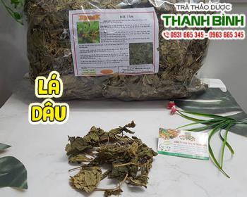 Mua bán lá dâu ở quận Tân Phú giúp chữa đau mắt đỏ giúp thải độc cơ thể