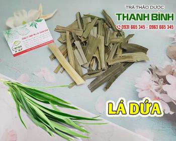 Mua bán lá dứa ở quận Phú Nhuận hỗ trợ cơ thể thanh nhiệt và lợi tiểu