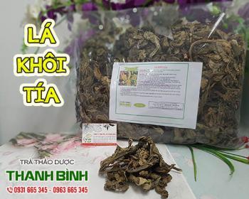 Mua bán lá khôi tía ở quận Tân Bình giúp giảm chứng trướng bụng, ợ hơi