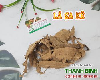 Mua bán lá sa kê ở huyện Bình Chánh giúp tăng cường chức năng gan hiệu quả