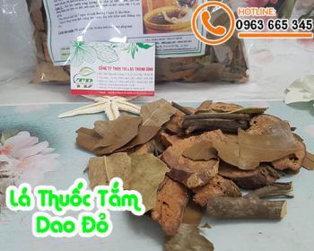 Mua bán lá thuốc tắm Dao đỏ ở quận Bình Tân ngâm mình tốt cho da và sức khỏe