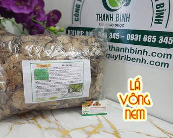 Mua bán lá vông nem ở quận Bình Tân giúp điều trị nhức đầu và viêm da