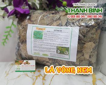 Mua bán lá vông nem tại TPHCM uy tín chất lượng tốt nhất