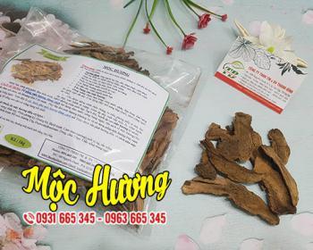 Mua bán mộc hương tại huyện Quốc Oai giúp ngăn ngừa sỏi thận và lợi tiểu