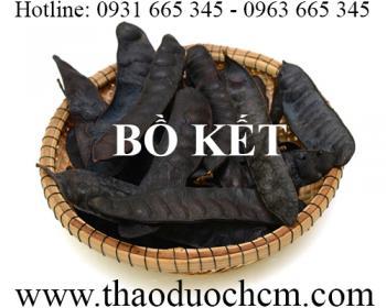 Mua bán bồ kết tại Thái Bình hỗ trợ điều trị táo bón an toàn nhất
