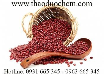 Tác dụng của bột đậu đỏ trong điều trị mụn nhọt sứng tấy hiệu quả nhất