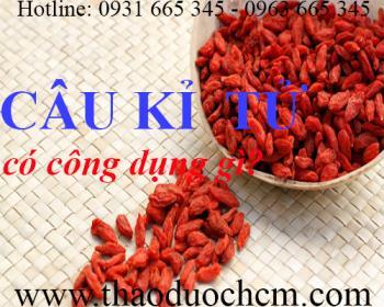 Mua bán câu kỉ tử tại huyện Thanh Oai có tác dụng giảm tê buốt chân tay