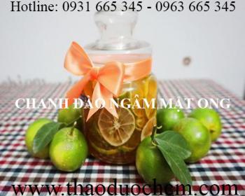 Địa điểm bán chanh đào tại Hà Nội hỗ trợ thanh nhiệt cơ thể tốt nhất