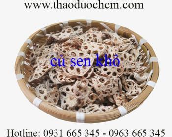Mua bán củ sen khô ở quận Tân Bình có công dụng chữa các bệnh ho cảm