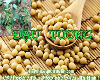 Mua bán đậu tương tại Thái Nguyên giúp điều hòa đường huyết tốt nhất