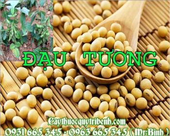 Mua bán đậu tương tại Trà Vinh có công dụng cung cấp canxi rất tốt