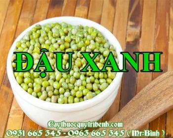 Mua bán đậu xanh tại Ninh Thuận rất tốt trong việc chữa ngộ độc thảo dược