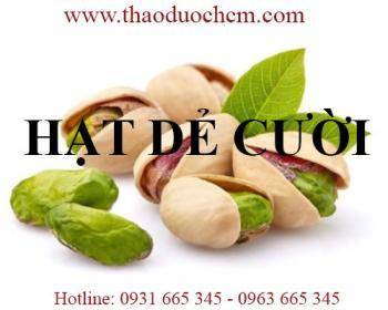 Mua bán hạt dẻ cười tại Đà Nẵng rất tốt cho người mất ngủ và ăn không ngon